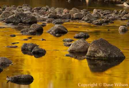 Nature and landscape photography of Arizona by Dave Wilson