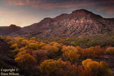 Sycamore Creek (and the Sycamore Canyon Wilderness) in the Verde Valley, Arizona