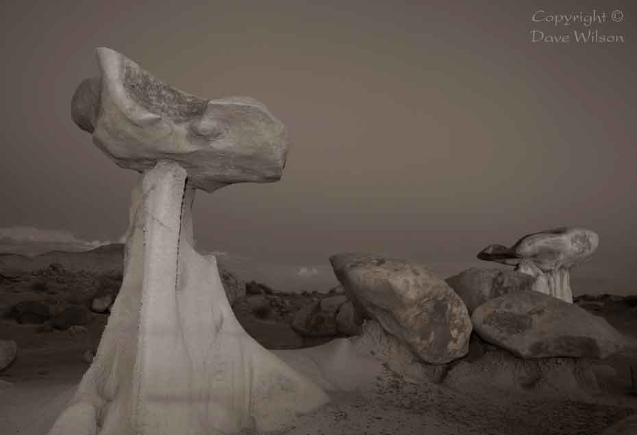 New Mexico's Bisti Badlands