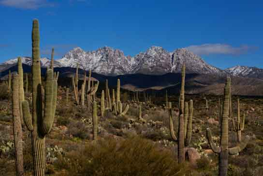 Four Peaks in the Mazatzal Mts. of Arizona