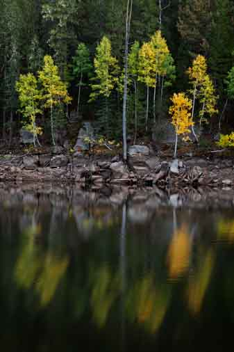 Knoll Lake on the Mogollon Rim, Arizona
