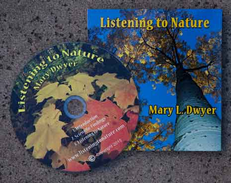 Listening to Nature by Mary Dwyer