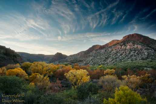 Autumn at Sycamore Canyon, Arizona