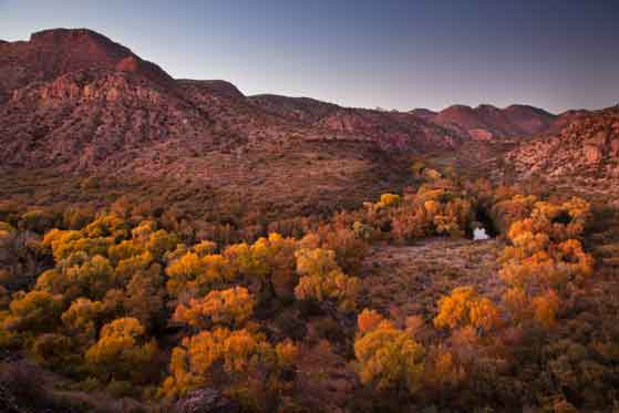 Autumn at Sycamore Creek, Arizona