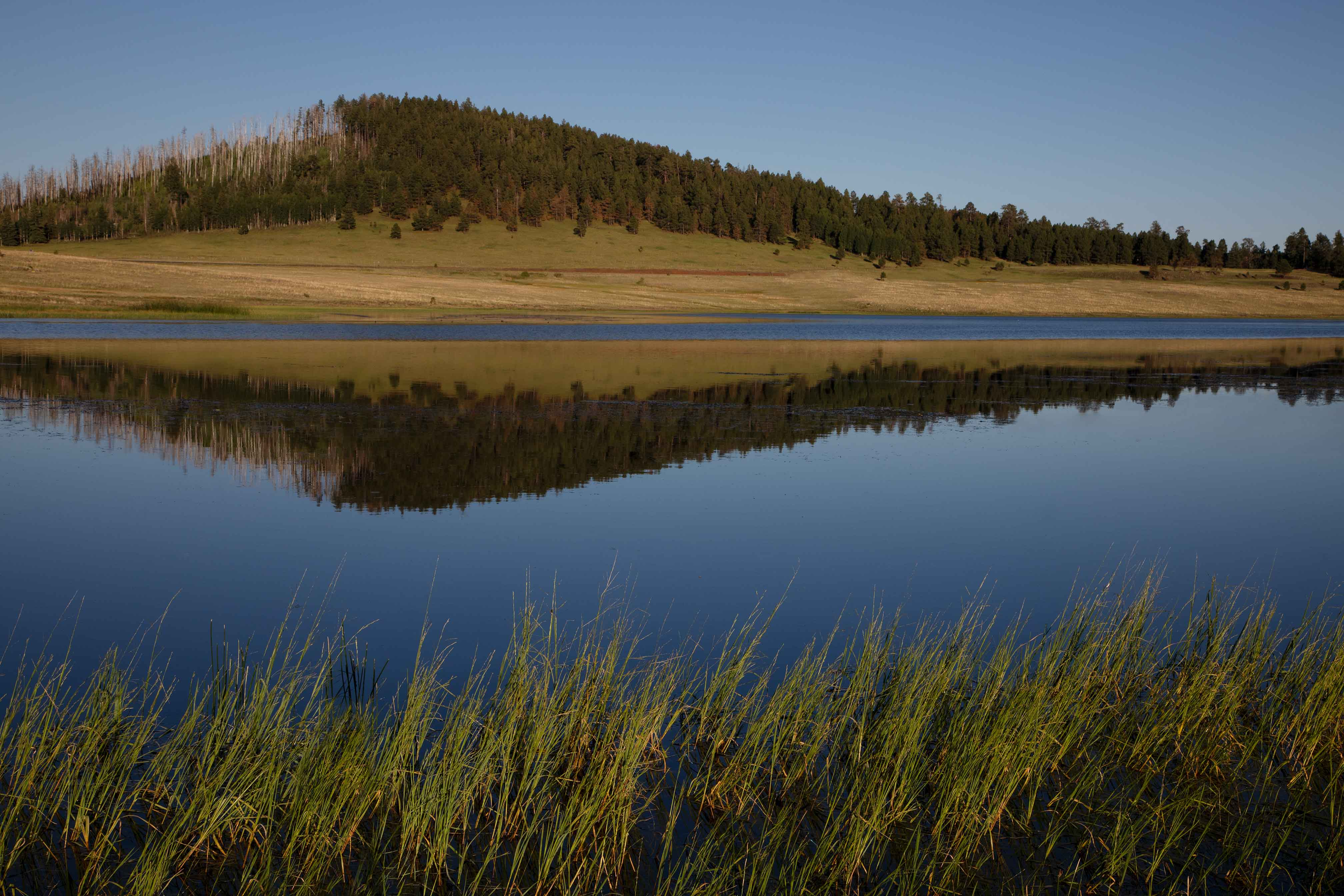 Crescent Lake in the White Mts. of eastern Arizona